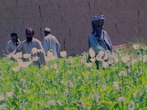 Opium Brides (Opium Yves Saint Laurent Perfume)