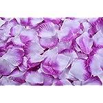 La-Tartelette-Silk-Rose-Petals-Wedding-Flower-Decoration-8000-Pcs-Purple-and-White