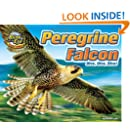 Peregrine Falcon: Dive, Dive, Dive! (Blink of an Eye: Superfast Animals)