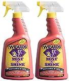 Wizards - Mist-N-Shine Professional