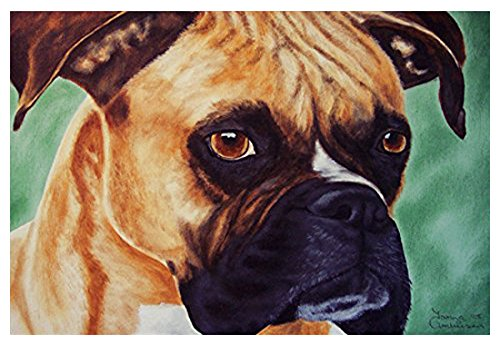 Boxer Door Mat - Caroline's Treasures AMB1029JMAT Boxer by Tanya and Craig Amberson Indoor or Outdoor Mat, 24