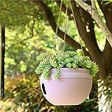 Sungmor Bowl-shapped Garden Self Watering Hanging Planter, Strong Plastic Flowerpot,Creative Water Storage & Release Planter Pot,Indoor Outdoor Decorative Planting Pot