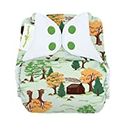 bumGenius Freetime All-in-One One-Size Snap Closure Cloth Diaper - Little House in The Big Woods Collection (Big Woods)