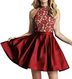 Homecoming Dress High Neck Short Cocktail Dress Sleeveless Prom Dress Lace Homecoming Dresses Red Pear