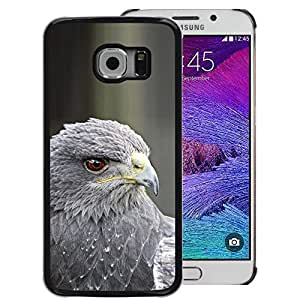 A-type Arte & diseño plástico duro Fundas Cover Cubre Hard Case Cover para Samsung Galaxy S6 EDGE (NOT S6) (Hawk Grey Prey Bird Beak Eye Feather)