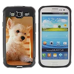 Suave TPU GEL Carcasa Funda Silicona Blando Estuche Caso de protección (para) Samsung Galaxy S3 III I9300 / CECELL Phone case / / Australian Terrier Cairn Norfolk West Dog /