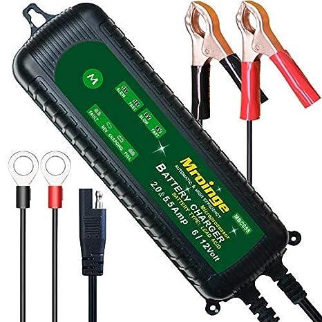51gHQaxv7PL._SX466_ amazon com mroinge mbc055 6v and 12v 5 5a smart vehicle battery