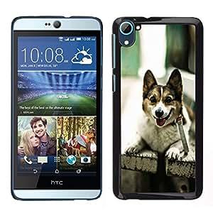 LECELL--Funda protectora / Cubierta / Piel For HTC Desire D826 -- Divertido admiten perros en un banco --