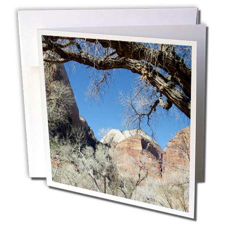 3dRose Jos Fauxtographee- Framed Tree Zion - A Tree framing The Photo of Zion National Park in Utah with Blue Sky - 6 Greeting Cards with envelopes (gc_298341_1)