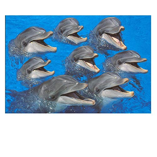Yingxin34 Bottlenose Dolphins Paper Adults Puzzle Lovable Animal Jigsaw Puzzles Toys DIY Kids Adult Decompression Puzzle Gift-Puzzle 500 pcs