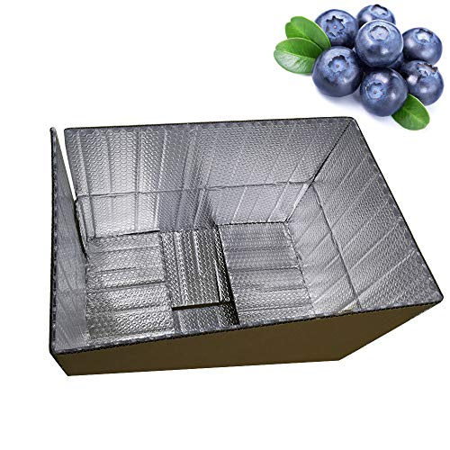 (Cool and Hot Isolation Aluminum Foil Bubble Inner Reflective Barrier Thermo Insulation Corrugated Thermal Box Carton (11.03x8.63x5.52inch))
