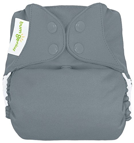bumGenius Freetime All-in-One One-Size Snap Closure Cloth Diaper (Armadillo) by bumGenius