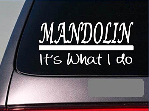 Mandolin sticker decal *E341* pick guitar bluegrass gospel mountain festival
