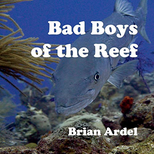 Bad Boys of the Reef