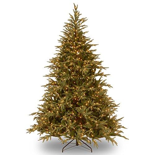 National Tree Frasier 9 Foot Grande Tree (Christmas Frasier Grande Tree)