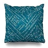 Decor Champ Throw Pillow Covers Side Mathematics Calculus Algebra Pattern Math Classroom Science Trigonometry Home Decor Sofa Pillowcase Square Size 20 x 20 Inches Cushion Cases