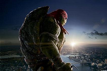 Amazon.com: Tomorrow sunny Raphael Teenage Mutant Ninja ...