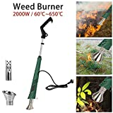 2000W Electric Weed Burner, Hot Air Burner- No Chemicals Eco Friendly Wand Thermal Weeding Stick with 2 nozzles up to 650 Degree for Garden