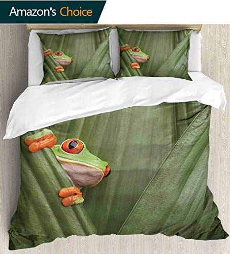 shirlyhome Animal Home 3 Piece Print Quilt Set,Red Eyed Tree Frog Crowling Between Leaves Tropical Jungle Rainforest Night Art Print with 2 Pillowcase for Kids Bedding 80