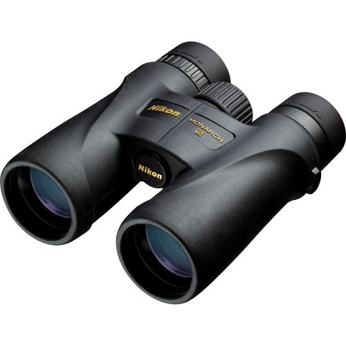 Buy nikon monarch 5 scope