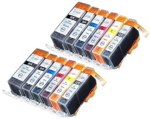Blake Printing Supply Ink Cartridge for Inkjet Printer, 12-Pack (2 Small Black, 2 Cyan, 2 Gray, 2 Magenta, 2 Yellow, 2 Big - Jet Ink Cartridge Cartridges