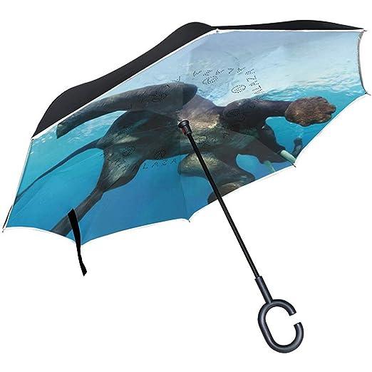 Merle House Paraguas de natación de Elefante invertido Paraguas de ...