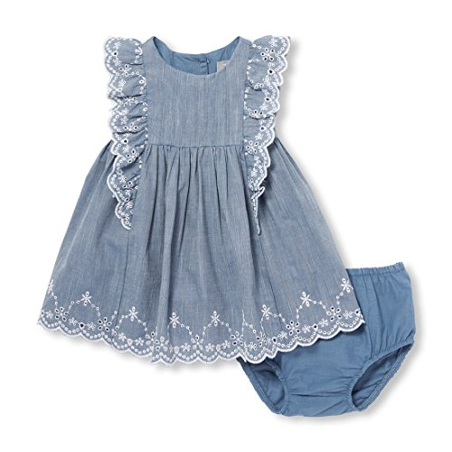 The Children's Place Baby Girls Flutter Sleeve Dress, Chambray, 3-6 ()