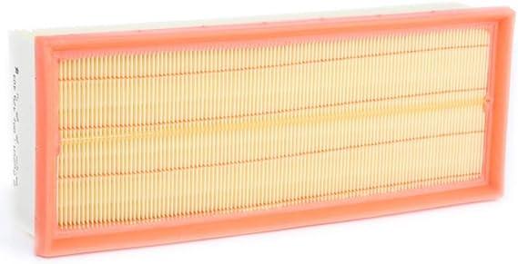 Bosch 1987429404 inserto de filtro de aire: Amazon.es: Coche y moto