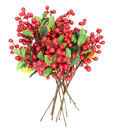 - En Ge 10 Pieces/Pack Mini Artificial Plant Single Stem Fake Holly Berry Twig Fruit for Photography Christmas Thanksgive Home Wedding Decoration (red)