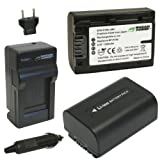 Wasabi Power KIT-BTR-FV50-LCH-FP50-01 Battery and Charger for Sony NP-FV30, NP-FV40, NP-FV50 (Gray)