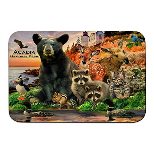 GRAPHICS & MORE Acadia National Park Maine ME Animals Bear Racoon Deer Moose Home Business Office Sign - Wood - 6