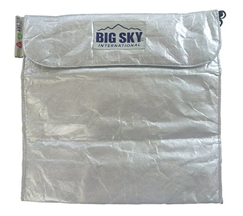 Big Sky International Insulite Pouch, Metallic Silver