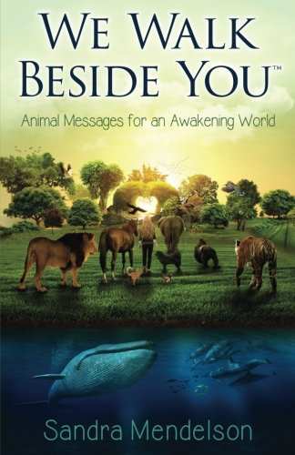 We Walk Beside You: Animal Messages for an Awakening World cover