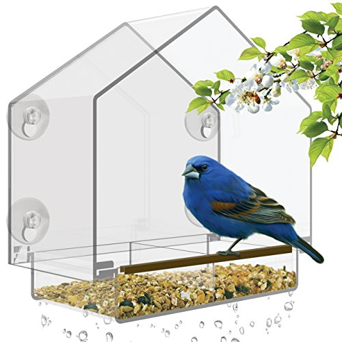 Nature's Hangout Window Bird Feeder with High Pitched Roof. Removable Sliding Tray & Drain Holes. Large Size, 100% Clear Acrylic. Easy to Clean. Great Gift. Guaranteed For All ()