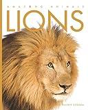 Amazing Animals - Lions, Valerie Bodden, 1583418075