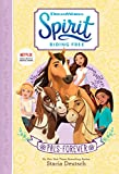 #10: Spirit Riding Free: PALs Forever