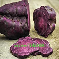 PlenTree High Quality. 50Seeds/Pack. Annual Fruit and Vegetable Seeds Molokai Purple Sweet Potato. DIY Home Garden& Bonsai Seeds: Red
