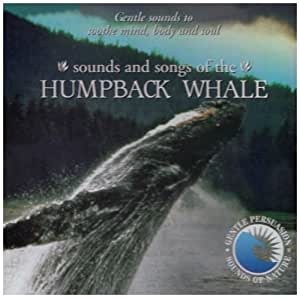 Sounds & Songs of the Humpback Whale