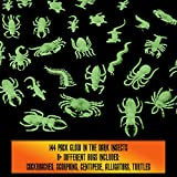 Glow in the Dark Insects - 144 Pieces - Party Favor and Prank Toys - Assorted Reptiles and Bugs Toys – Great for Halloween, Birthday Parties, Piñatas, Prizes and More - by Skeleteen