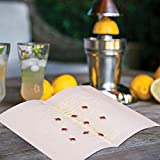 Fruit Fly Trap, 10 Pack Fruit Fly Trap, Gnat