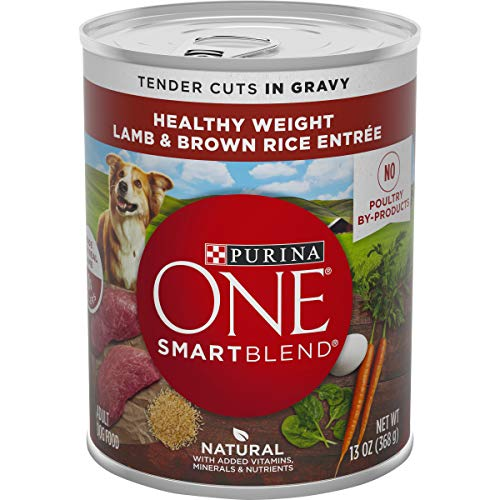 Purina-ONE-SmartBlend-Natural-Healthy-Weight-Formula-Adult-Dry-Dog-Food-Wet-Dog-Food