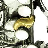 Oleg Pro Saxophone Enhancer: Bis Key