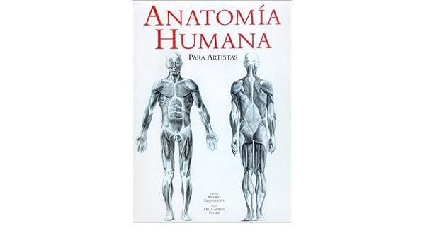 Anatomia humana para artistas: Amazon.es: Szunyoghy, Feher: Libros