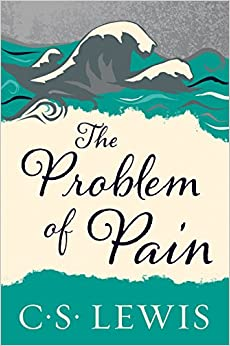 Image result for the problem of pain