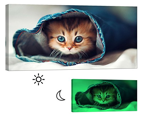 LightFairy Glow in the Dark Canvas Painting - Stretched and Framed Giclee Wall Art Print - Animals Nature Cat Up The Sleeve - Master Bedroom Living Room Decor - 6 Hours Glow - 46 x 24 Inch