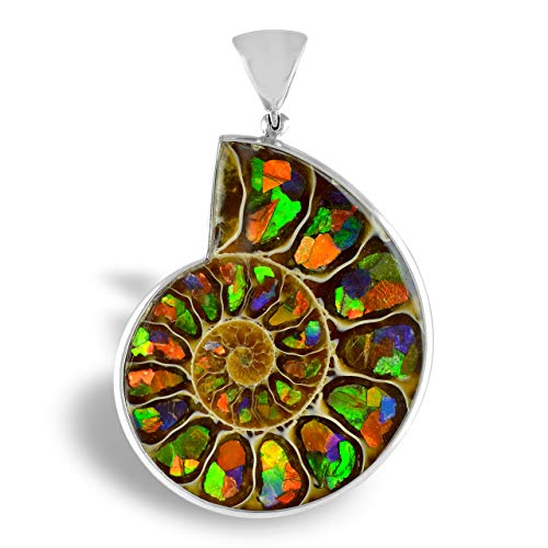 Starborn Sterling Silver Ammonite with Ammolite Inlay Pendant