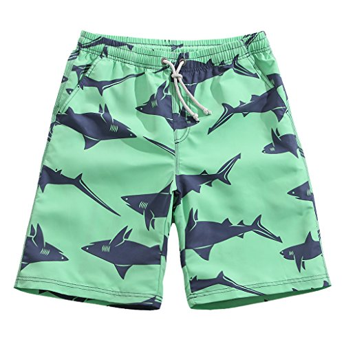 Men's Lightweight Quick Dry Predator Graphic Board Shorts X-Large 36-37