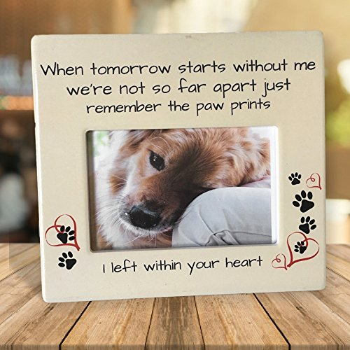 Banberry Designs Pet Memorial Frame - When Tomorrow Starts Without ...