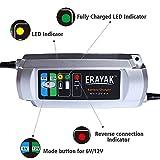 ERAYAK 6V/12V 6A Automatic Battery Charger Car