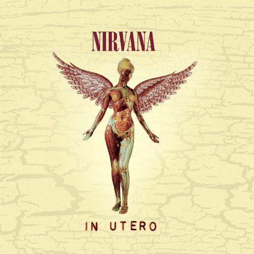 Heart-Shaped Box (Box Nirvana Heart Shaped)